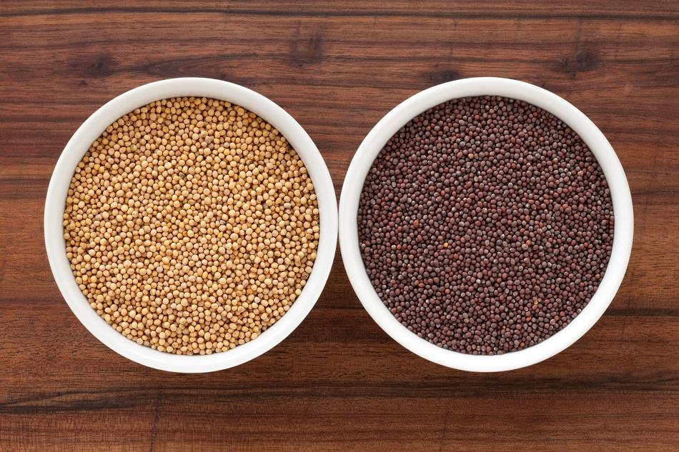 Mustard-grains
